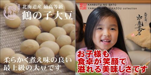 daizu-setumei