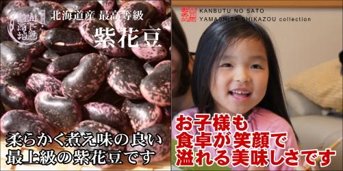 murasaki-setumei