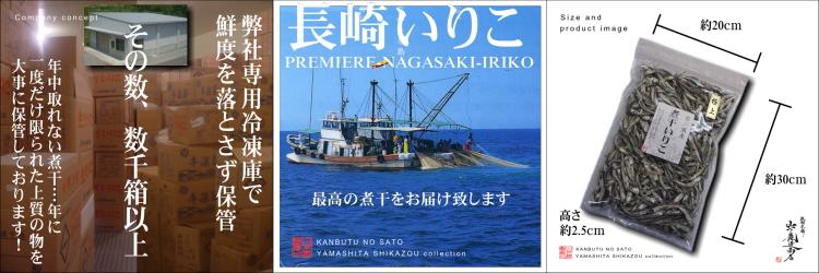 n-tokuiriko-setumei